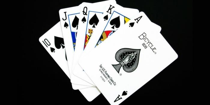 Jenis Permainan Judi Kartu Populer di Indonesia